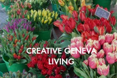 CATEGORY-CREATIVE-GENEVA-LIVING