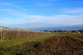 slumbering-crop-land