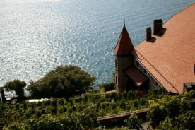 Glittering waters along the Lavaux trail.