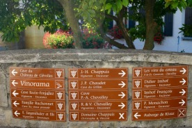 A choice of vineyards found along the Lavaux trail.