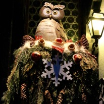 A Christmas owl stands guard outside Elsie's Bar in Kirchplatz opposite the church.